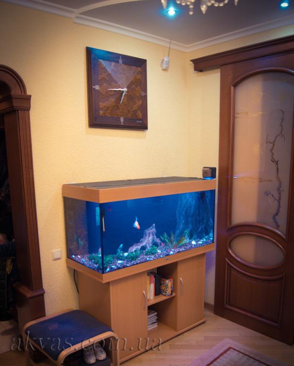 Домашний аквариум. Киев, ж/м Позняки