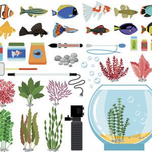 Для запуска аквариума